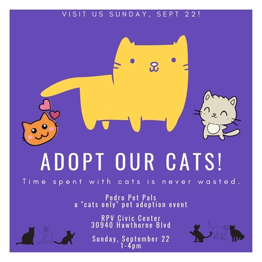 Pet Adoption Event - Cats Only