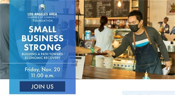 Small Business Strong Webinar November 20