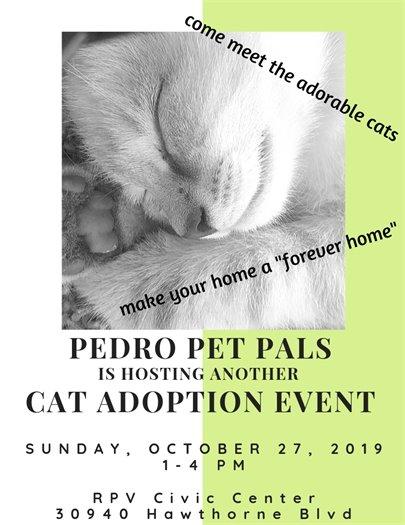 Cat Adoption Event 10.27.19