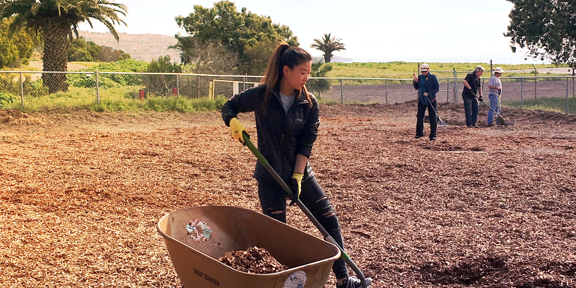 Volunteers working hard spreading out mulch at Rancho Caninos Dog Park