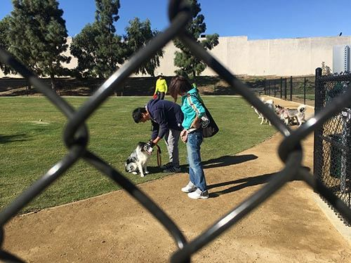 Eastview Dog Park Ribbon Cutting 12.7.17 035