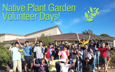 Native Plant Garden Volunteer Days!