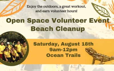 August 18th Beach Clean-Up