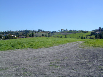 Open, grassy area with dirt road