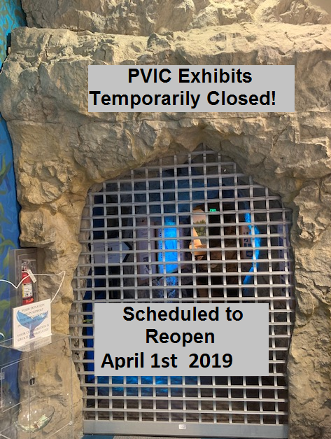 PVIC 4.1.2019 OPENING PHOTO