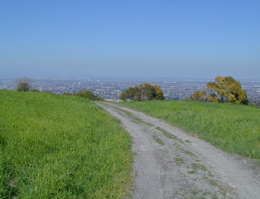 View of dirt trail on hill overlooking city