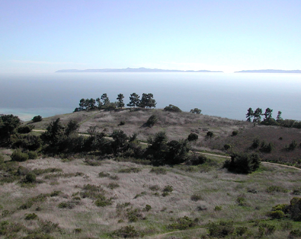 View from above of a trail and natural grass area with ocean in background in San Ramon Reserve