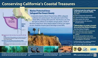 Point Vicente MPA_1 (reduced).jpg